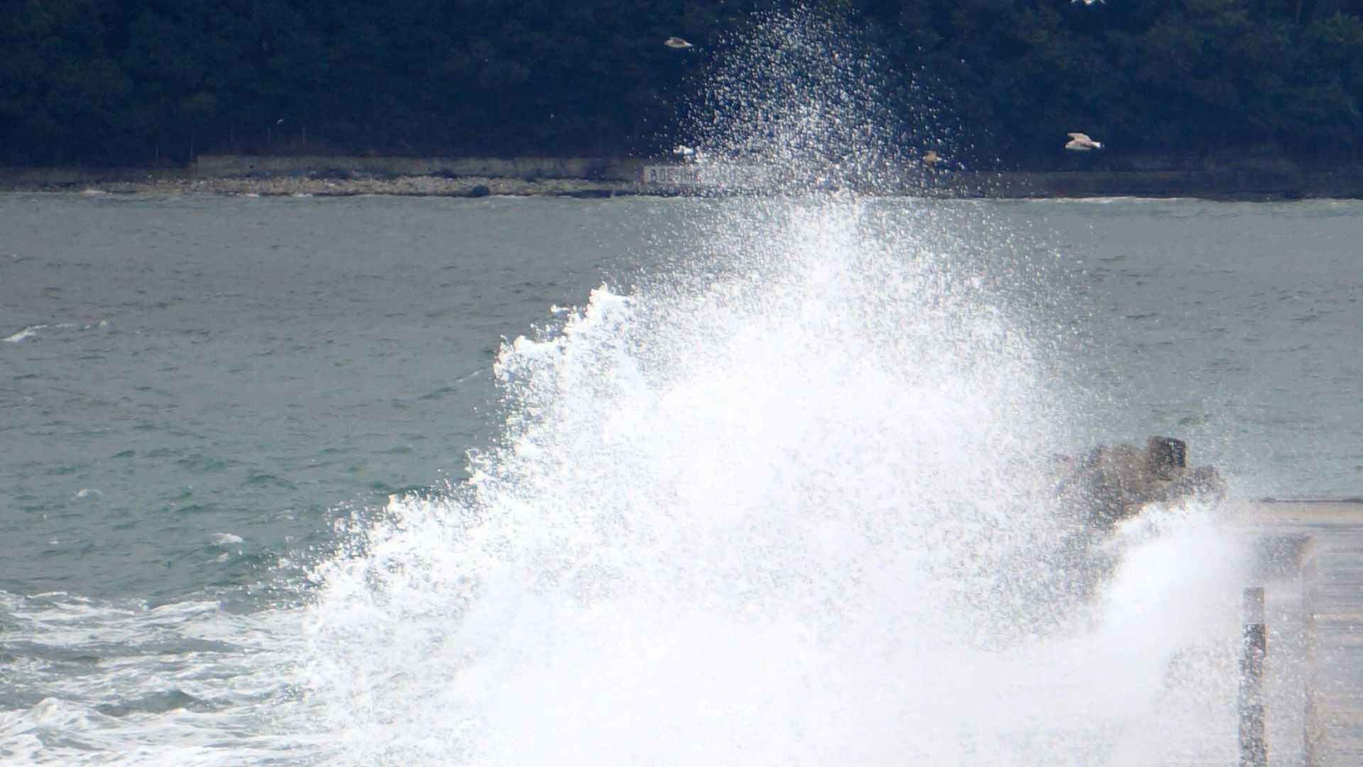 Проверка показа - водата край Варна става за къпане