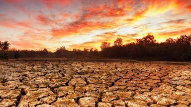 Нивата на CO2 - най-високи от 15 милиона години насам