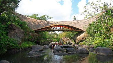 """Вижте """"Зеленото училище"""" в джунглата на остров Бали (видео)"""