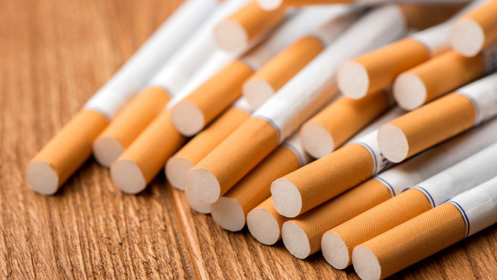 Разкриха мрежа от 4 незаконни цигарени фабрики в страната