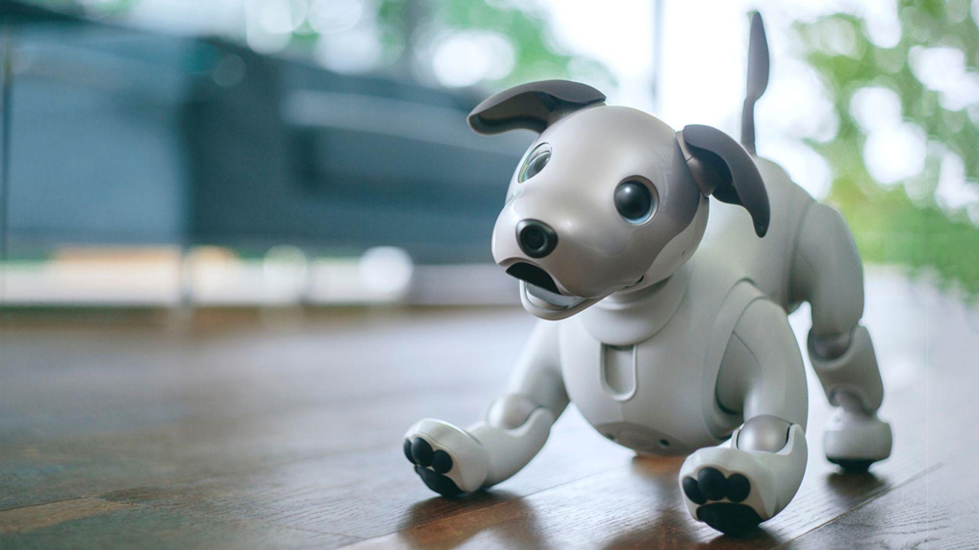 Роботът-куче Sony Aibo излиза на световния пазар