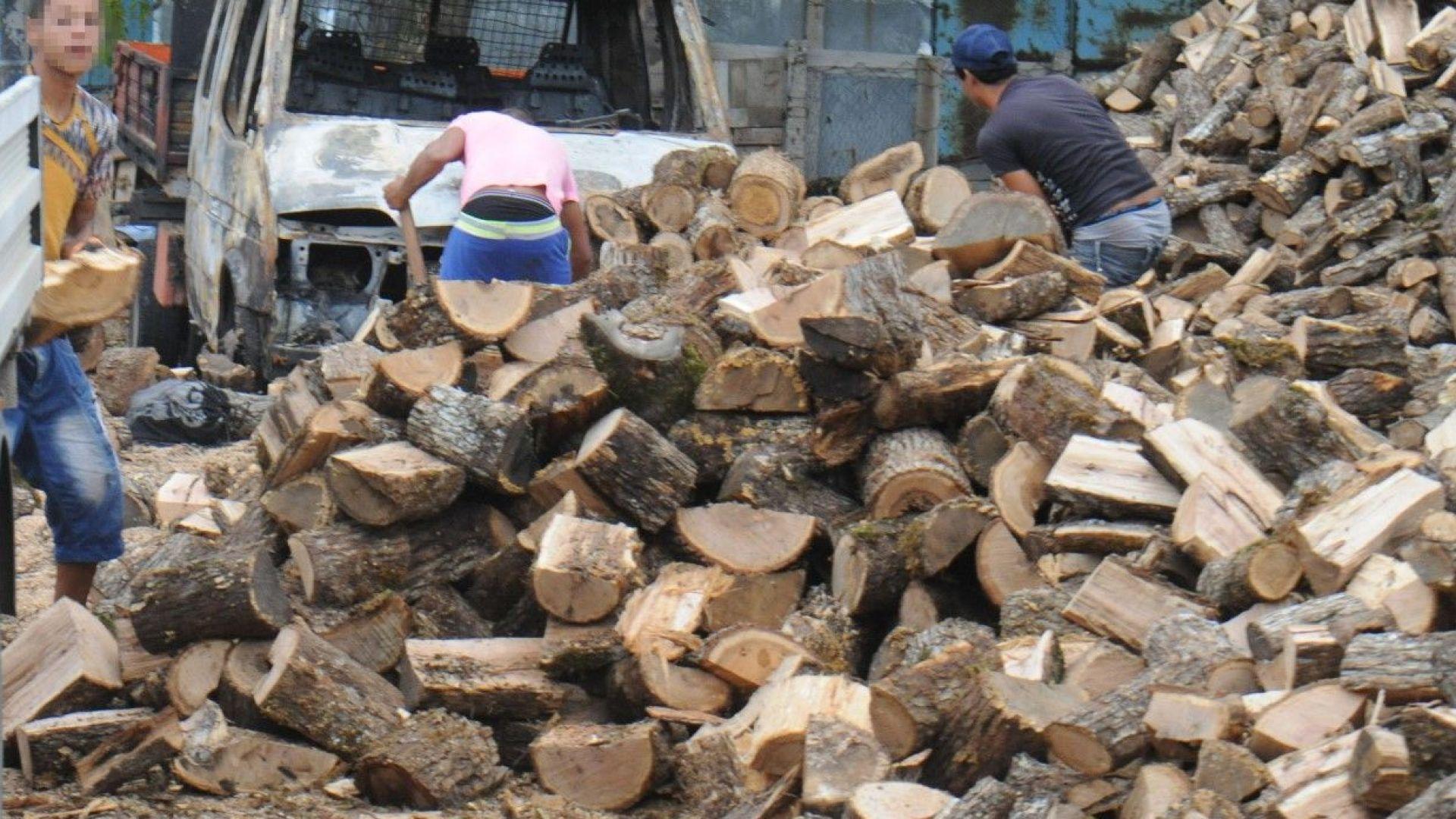 Дървата за огрев прехвърлиха 100 лева за кубик