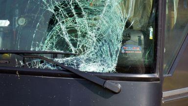 """Автобус от столичния """"Градски транспорт"""" се удари в дърво"""