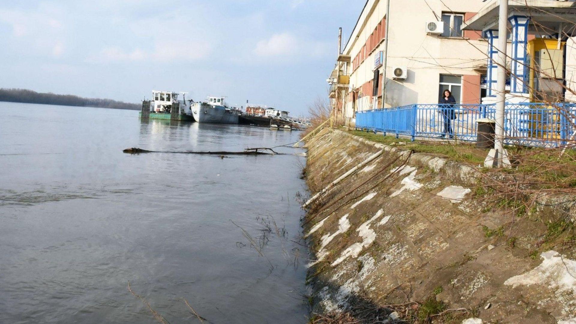 Издирваната майка скочила в Дунав с бебето си, преди това бутнала сина си в реката