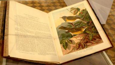Уникална изложба показва любовта на цар Фердинанд I към птиците