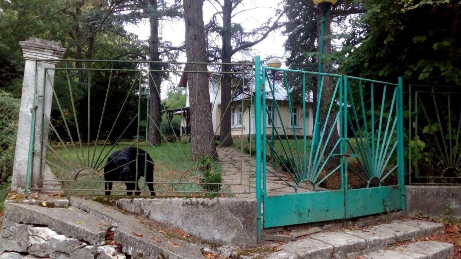 Царската вила в Национален историко-археологически резерват