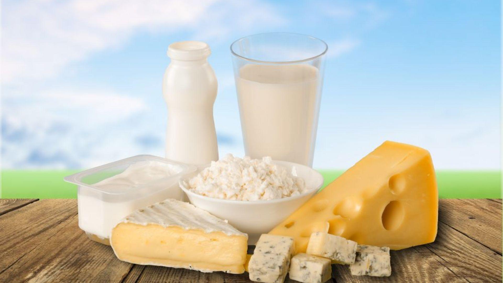 Учени: Сиренето и кашкавалът свалят холестерола