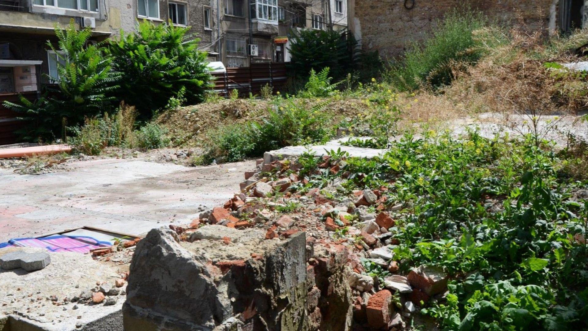 Софийски реалности: Гора заменя бутнатата къща на Рачо Петров