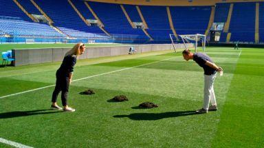Къртици нахлуха на стадион от Шампионска лига