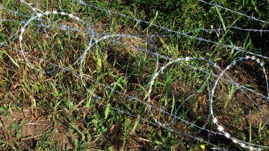 Експерти на БАБХ влязоха във ферма с помощта на полицията заради чумата