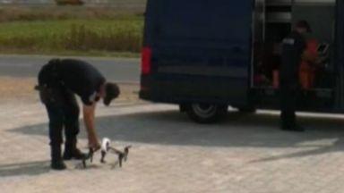 В Косово хващат нарушители на пътя с дронове