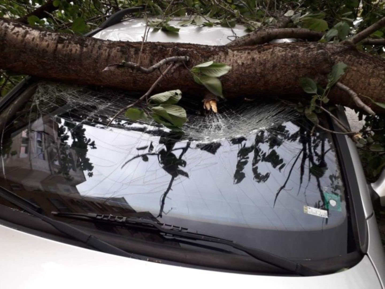 Монтанска кола е със счупено предно стъкло