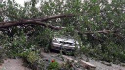 Силен вятър събори дървета върху коли, 8000 домакинства са без ток