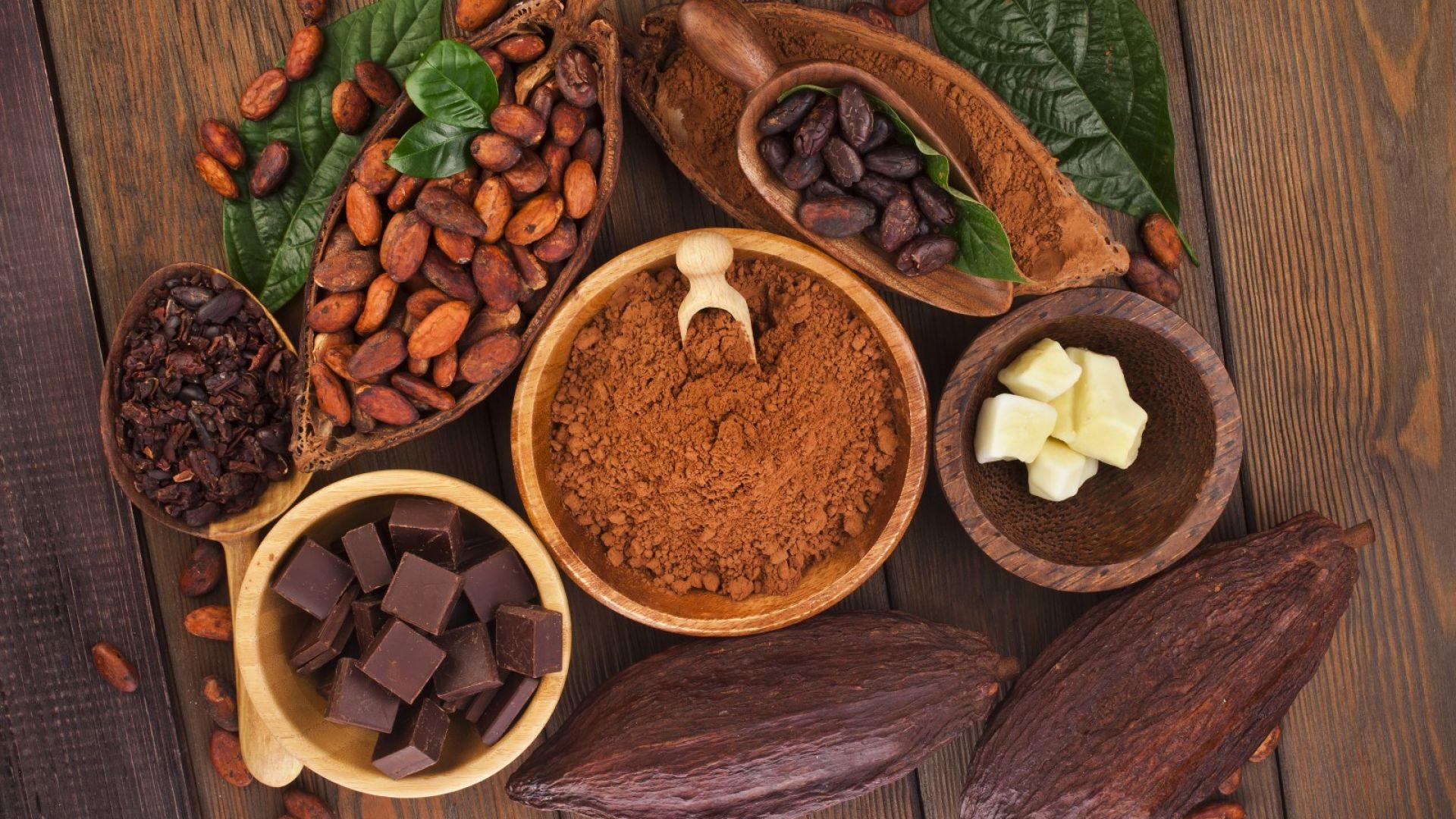 Какаото е най-богатият източник на витамин D