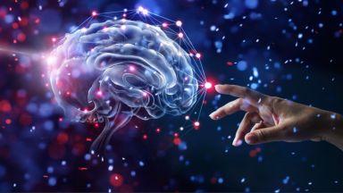 Невробиолог: Сънуваме сънища понеже животът е твърде скучен