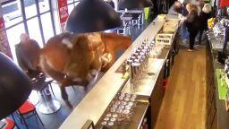 Състезателен кон нахлу във френски бар и препуска сред масите (видео)