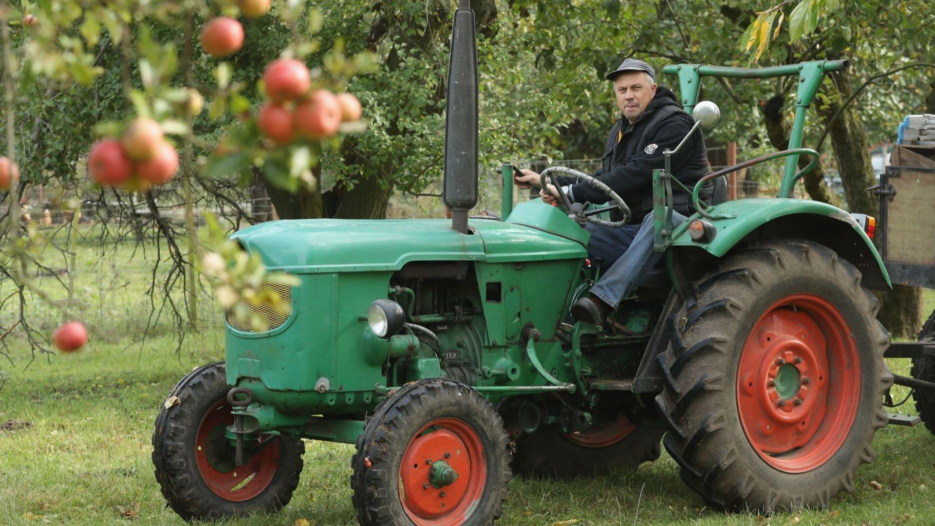 32% от работниците във ферми в Ирландия са българи