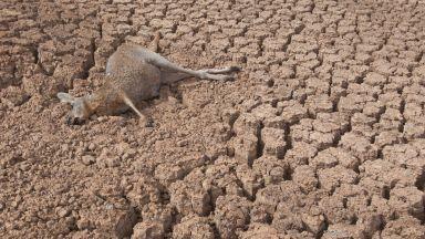 Рекордна суша в  Австралия, задава се и у нас