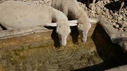 Свирепа суша в Западна България, валежи не се задават