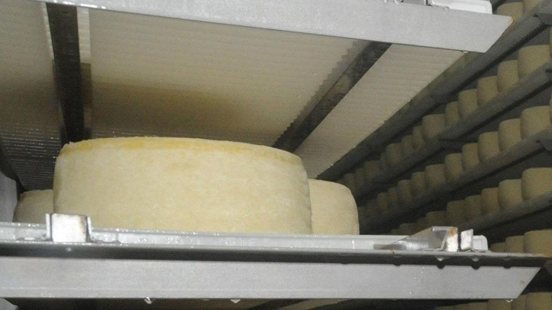 Фермерите, искащи да получат субсидии, да докажат законна продажба на млякото