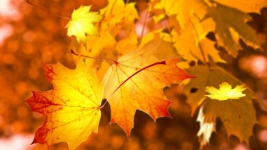 """Още седмица топло и слънчево """"октомврийско лято"""""""
