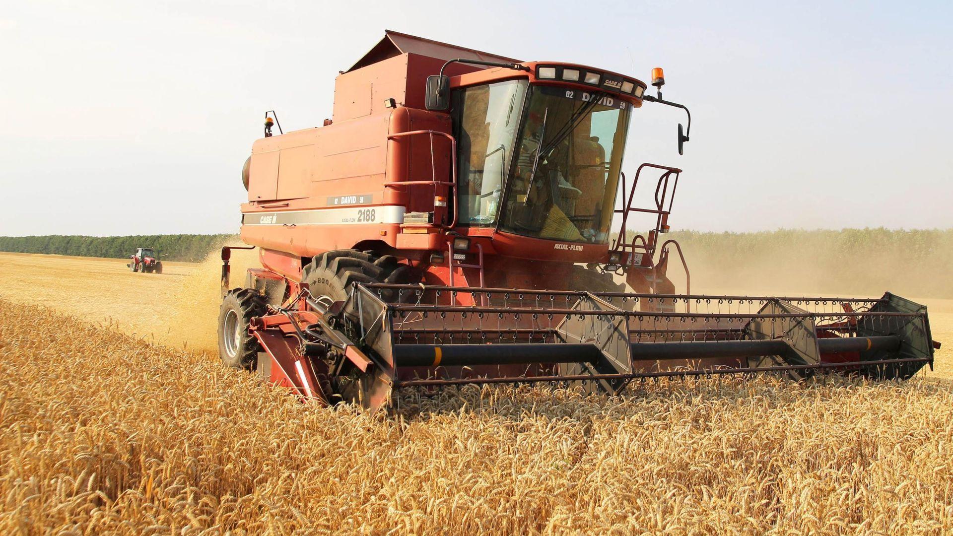 Цените на основните зърнени стоки на борсовите пазари вървят нагоре
