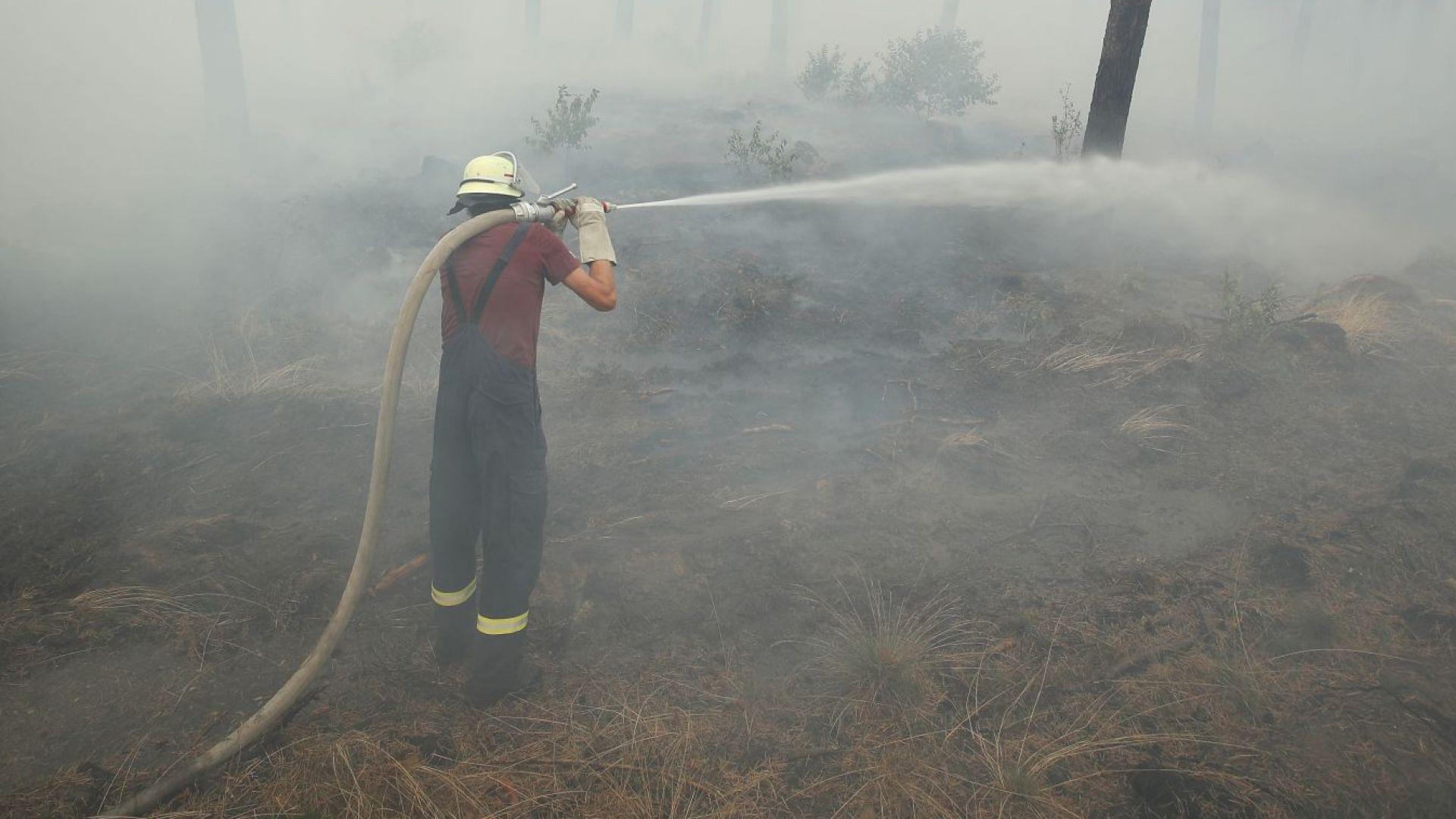 Непълнолетни българи опитали да разпалят пожар на остров Крит