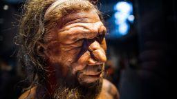 Неандерталците може да са убити от обръщане на магнитните полюси