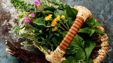 Естествен детокс с 3 дара от природата