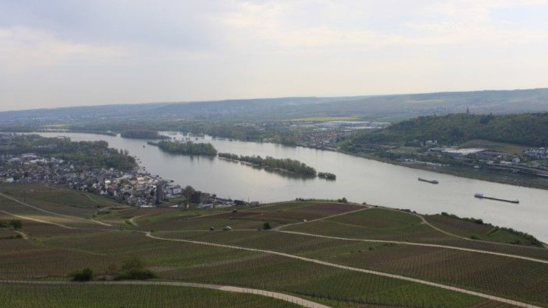 Спряха корабите по Рейн, водата в реката е критично малко.