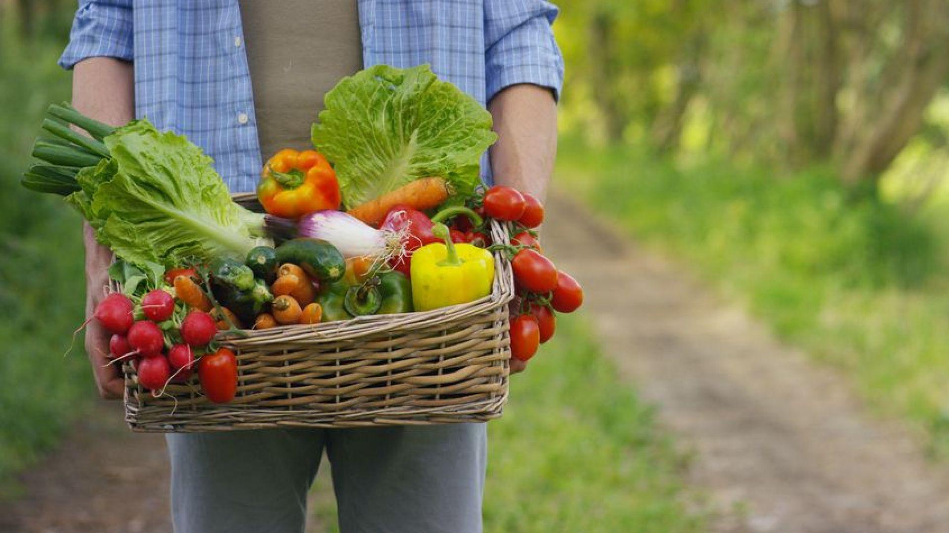 Може ли консумацията на биохрани да ни предпази от рак