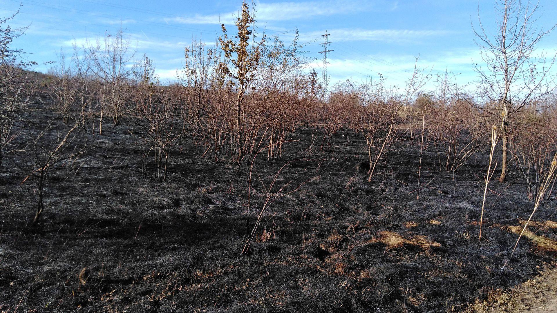 Пожарът край София е изгасен, но огнеборци ще пазят цяла нощ
