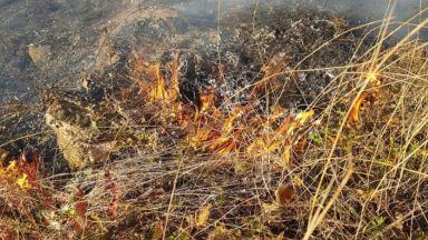 Пожар затруднява движението по пътя София - Варна край Сопот