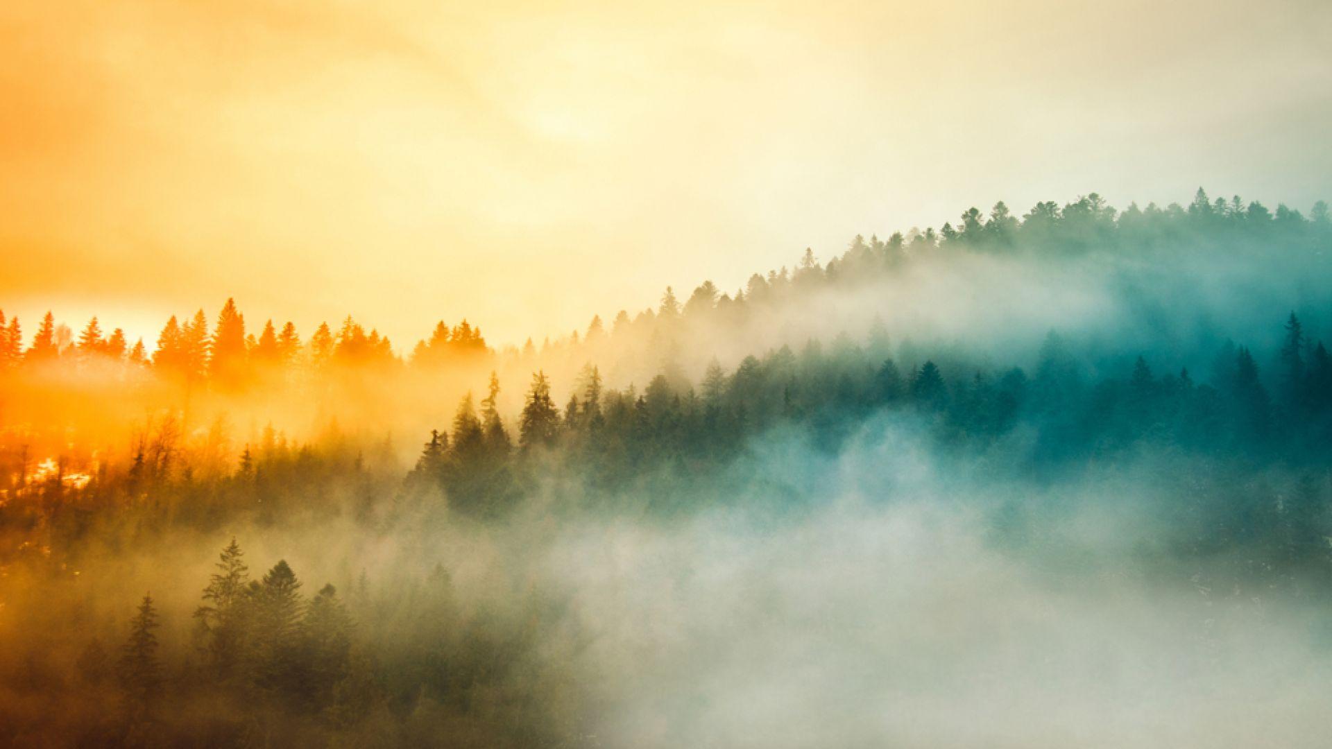 Антициклоните носят хубаво време, но и зимен студ и мъгли