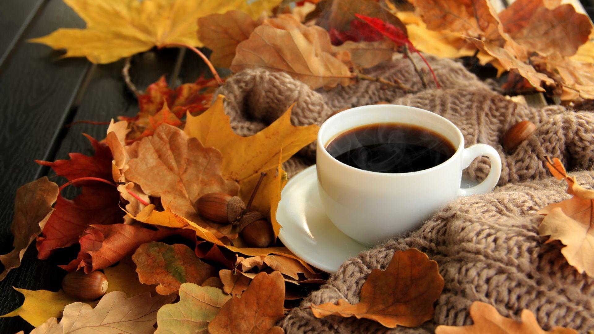 Ноември -  от минус 7 до 25 градуса