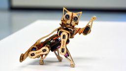 Правят роботизирана котка за 250 долара