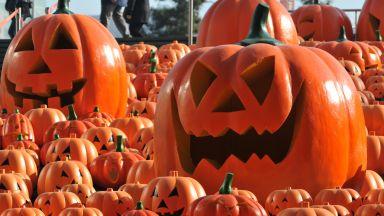 Какво е Хелоуин? От келтите до наши дни, от другия край на света до България