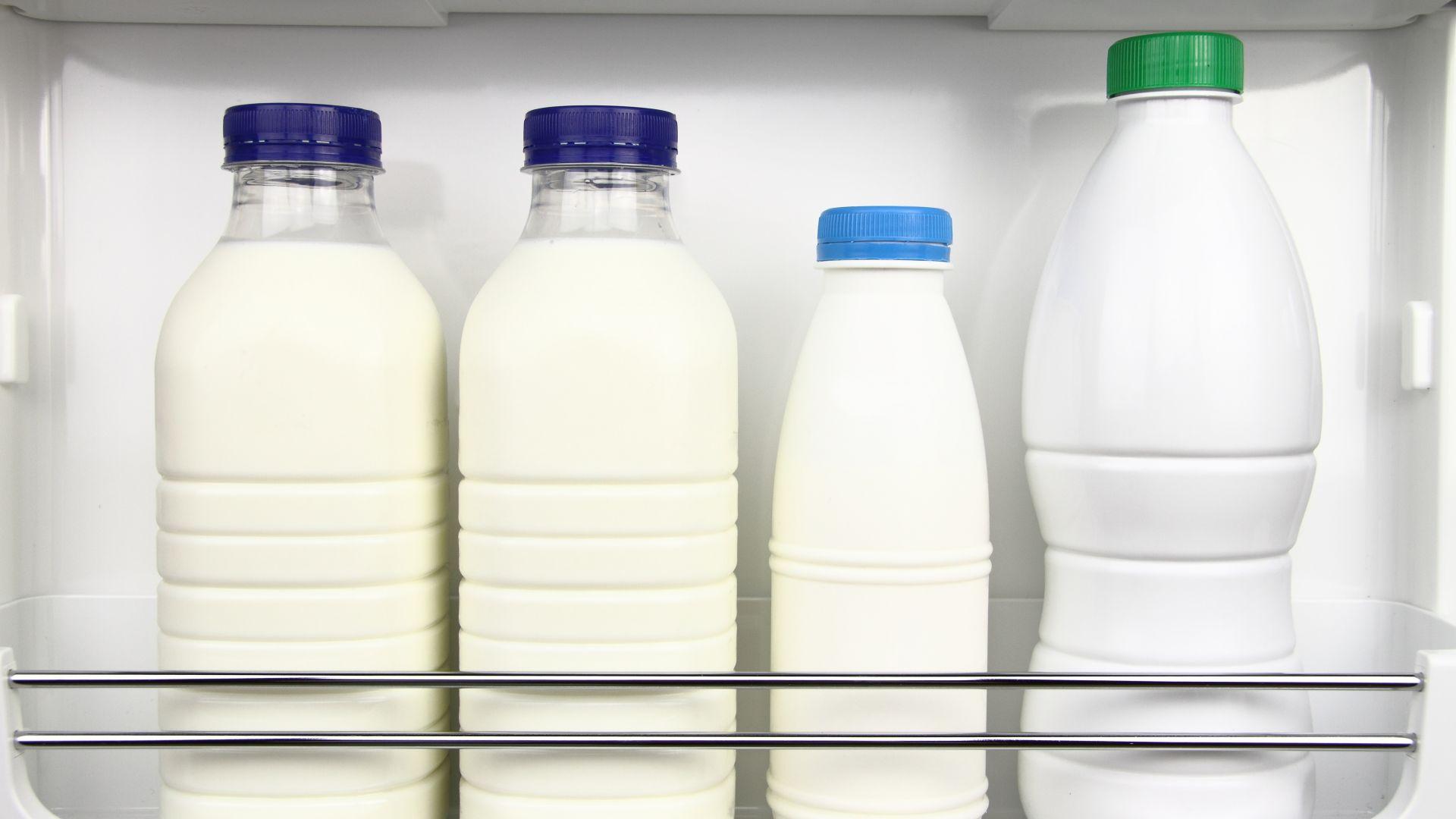 Започват проверки за качеството на млечните продукти по училищните схеми