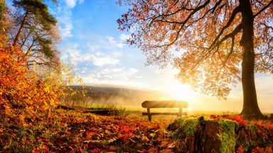 Златната есен продължава с почти летни температури
