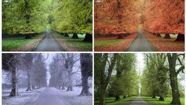 Има връзка между сезоните и умствените способности