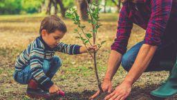 """""""Не бъди дърво, засади такова"""" в Русе"""