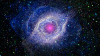Супернова може да е унищожила живота на Земята