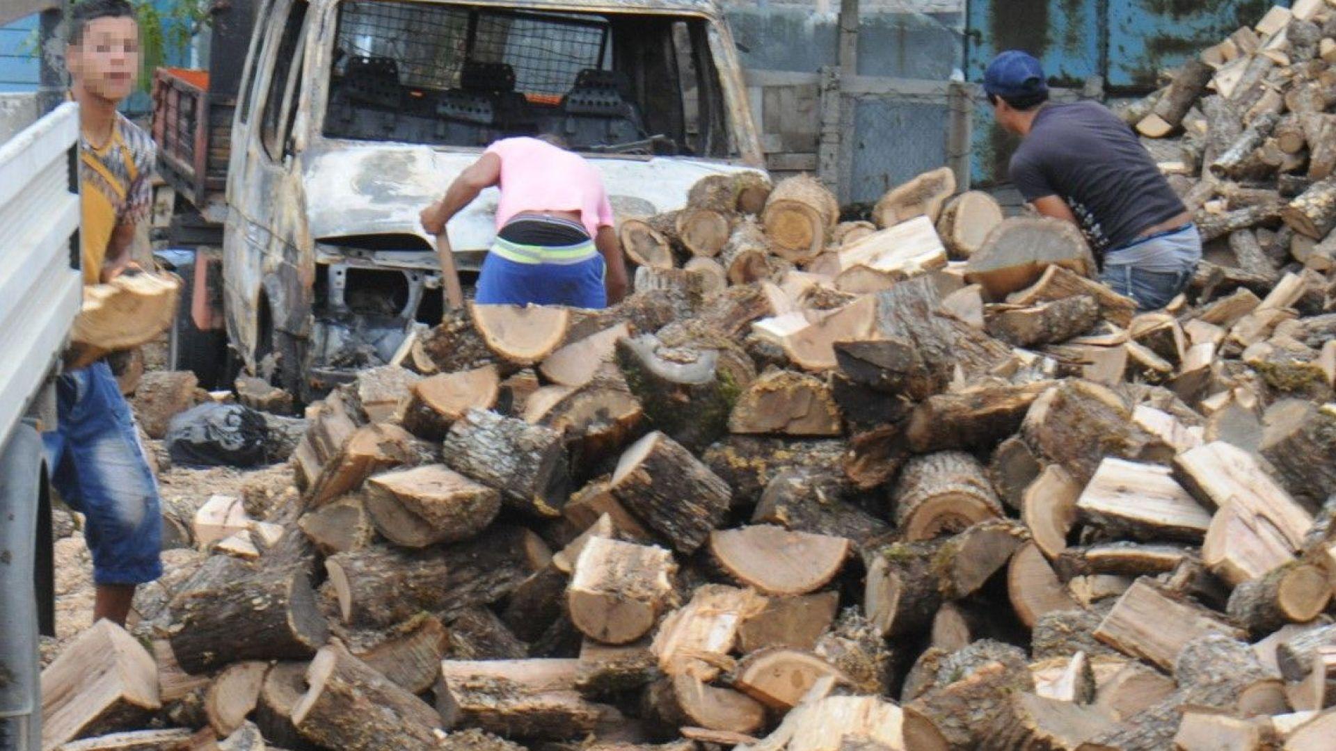 Румънците изкупуват дървата и пелетите в Русе