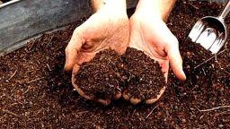 Пловдив ще има първите количества собствен компост след месец