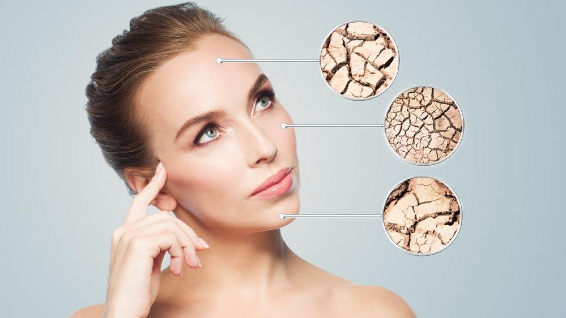 От какво има нужда кожата ни - сигнали и решения