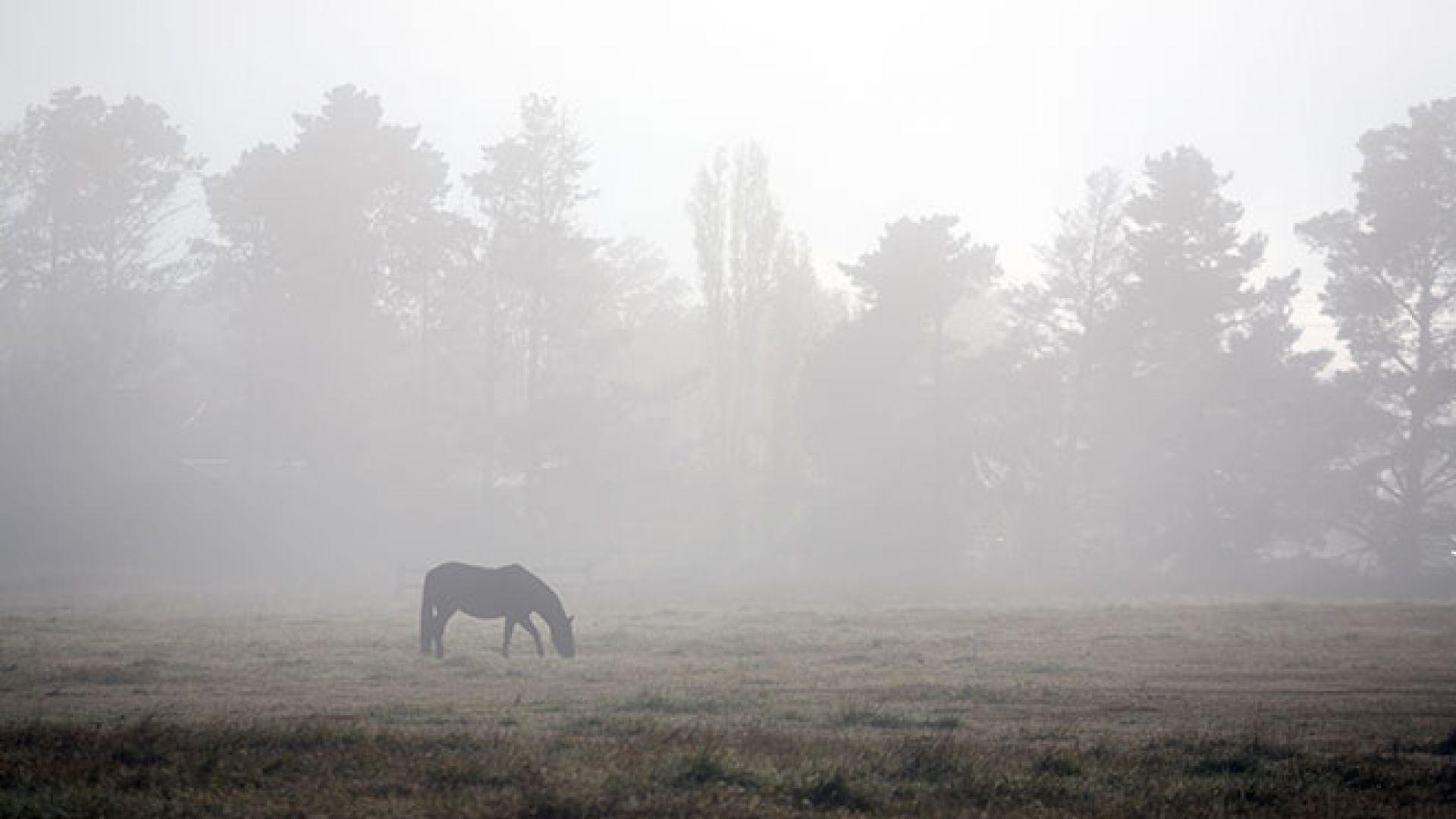 Какво представлява мъглата, как и кога се появява?