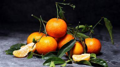ЕС забрани вреден пестицид, с който се пръскат портокали и мандарини