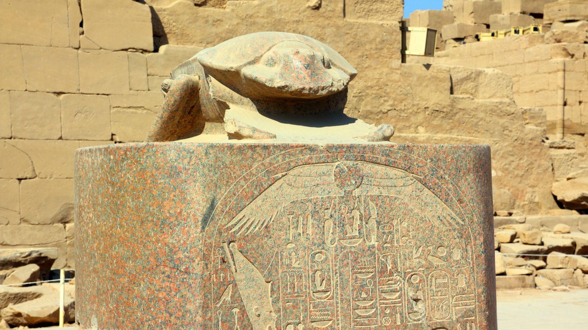 Археолози откриха за първи път мумифицирани скарабеи