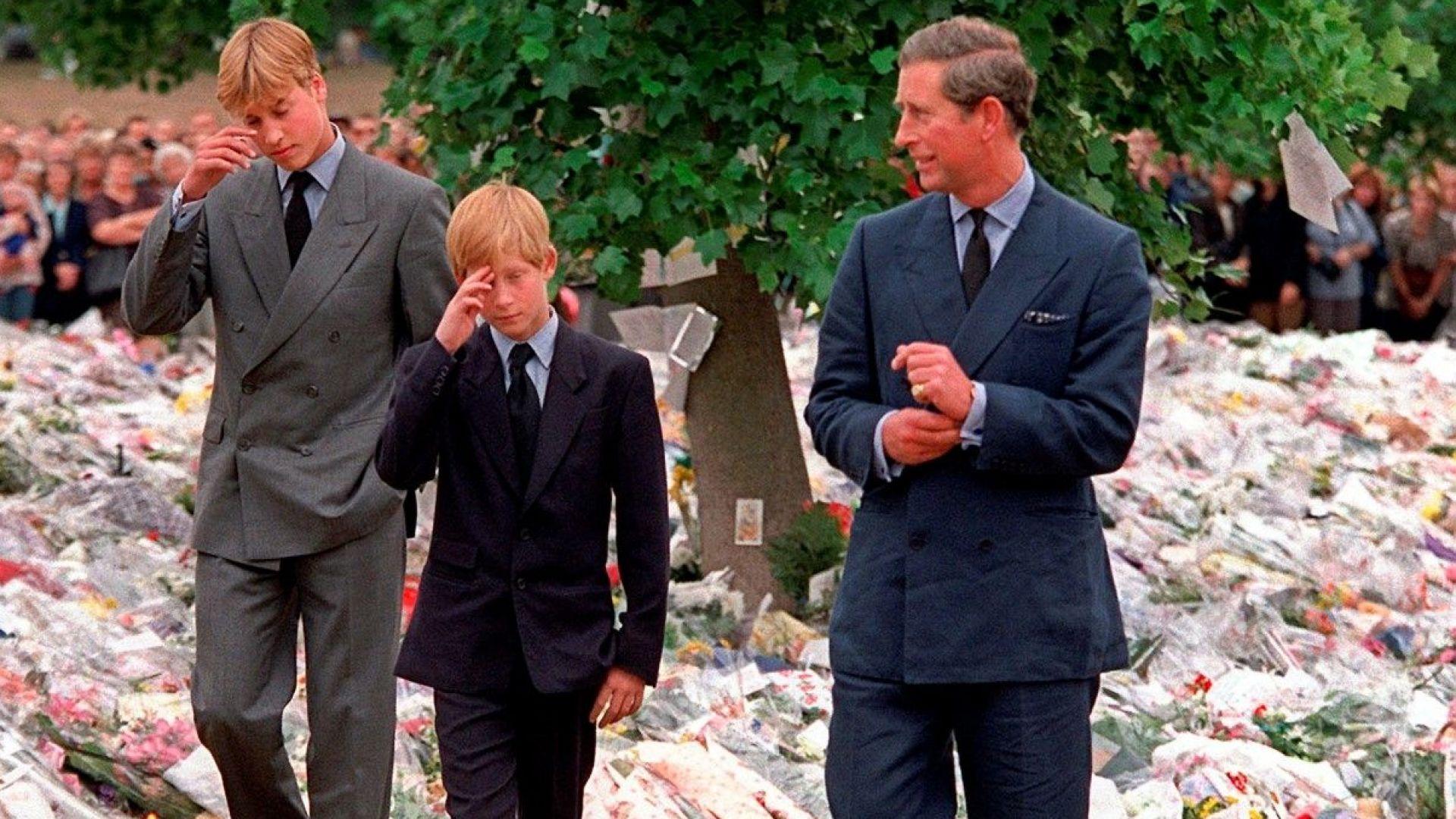 Принц Уилям: Смъртта на майка ми ми причини несравнима болка