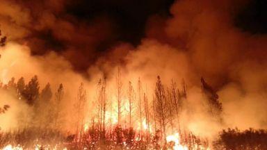 Климатолози: пожарите ще стават все по-яростни, големи, бързи и опасни (видео)